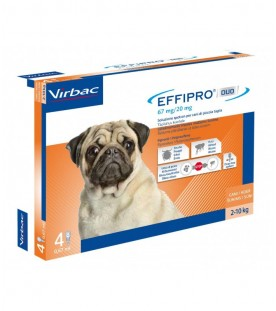 Effipro Duo Cane Small 2-10 kg 4 Pipette SEC01058