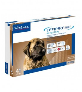 Effipro Duo Cane XLarge 40-60 kg 4 Pipette SEC01061