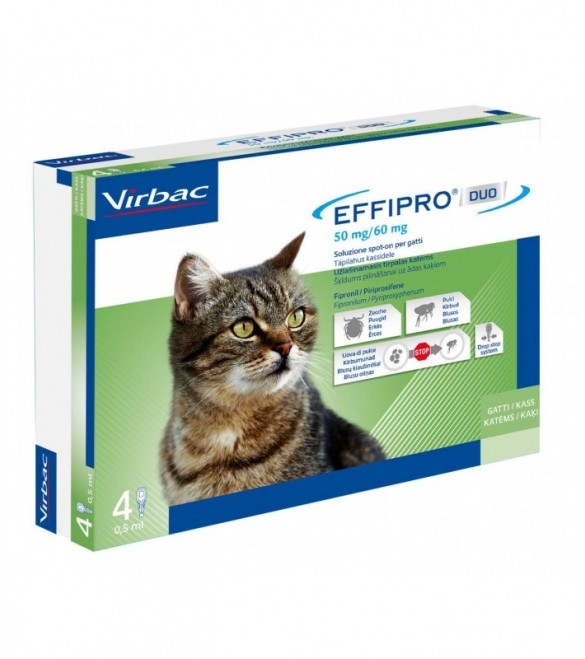 Effipro Duo Gatto 1-6 kg 4 Pipette SEC01057