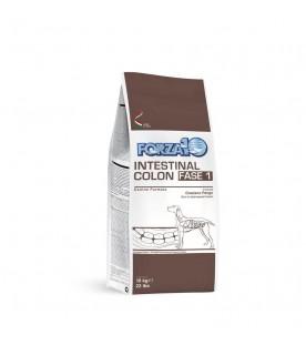 Forza10 Intestinal Colon Fase Uno 10 kg SP00223