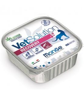 Monge VetSolution Cat Recovery 100 g. SEC00548