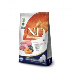 N&D Grain Free Pumpkin Cane Lamb & Blueberry Puppy Medium & Maxi 12 kg SEC00970