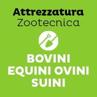 Bovini-Equini-Ovini-Suini